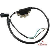 atvs quads - Promax Wire Ignition Coil for stroke cc cc cc cc cc ATVs Dirt Bikes Go Karts Quad Wheeler Buggys