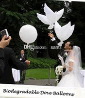 Wholesale Wedding helium inflatable biodegradable white Dove Balloons for wedding decoration doves shaped bio balloons