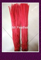 Wholesale Red Pheasant Tail Feather cm inch Opera chicken feathered lady amhurst pheasant Feathers
