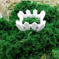 Nueva Llegada De Plantas Artificiales De Simulación De Musgo Verde Novedad De Flores Bonsai Macetas Decoración Accesorios Para La Decoración Del Hogar Envío Gratuito