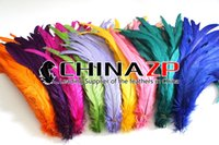 Wholesale CHINAZP Factory Exporting cm inch Length Good Quality Muliti Colors Fully Dyed Rooster Tail Feathers