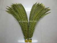 Wholesale Factory Direct inch cm Yellow Lady Amherst Pheasant Tail Feathers Hair Decoration Party Decoration