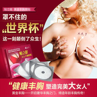Wholesale 100PCS boxes Female Breast Enlargement Mask Breast Chest Breast Augmentation Enhancer Up Make Chest Bigger Quick