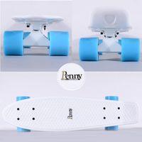 Wholesale Penny Mint Complete Skateboard