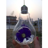 Wholesale New Glass Bulb Lamp Shape Flower Water Plant Hanging Vase Container Pot Indoor Office Wedding Decor