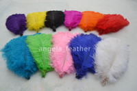 Wholesale inch Ostrich Feather Plume White Lime Green Turquoise Purple Red Ivory Black for wedding centerpiece