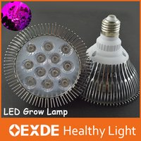 induction grow light - Led Grow Blue Red E27 w w w w w w w Cree Plant Growing Lights Induction Lamp Par