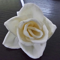 Wholesale New Design and High Quality Natural Handmade Dry Flower For Diffuser with Diameter cm