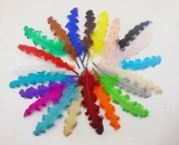 Wholesale DIY pheasant feathers roll curly curly nagorie goose feathers feather pad accessories cm colors