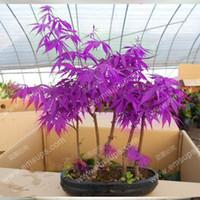 Cheap pcs purple Best beautiful purple