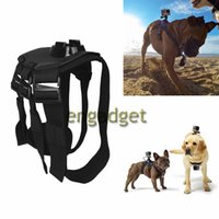 Wholesale Hot Sale Dog Harness Chest Fetch Strap Belt Mount for GoPro Hero Camera