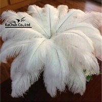 Wholesale A variety of sizes Fashion wedding decoration ostrich feather guide corridor dress Halloween scene layout