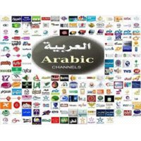 Wholesale 2 years Lead Cool Arabic IPTV account for android IPTV box Arabic channels support Bein sport without box