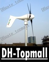 Wholesale Off grid Breeze Dragonfly W Wind turbine generator build in MPPT controller Ashley