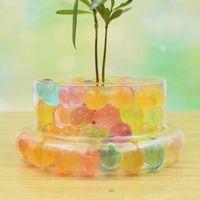 Wholesale 2016 NEW bonsai Desk Seven Color Crystal Boll Never Fade For Terrariums Office Desk Decor Flower Pots Garden Accessories E426J