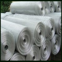 Wholesale Hot dipped Galvanized Welded Wire Mesh Iron Wire Material m Height m Length With High Quality