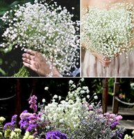 baby tulip - 2015 Gypsophila Baby Breath Fake Silk Artificial Flower Plant for Home Wedding Party Home Decoration in Stock