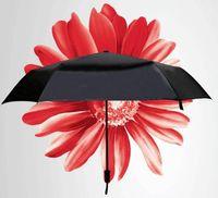 beach umbrella s - creative umbrella black sun uv mini women s folding umbrellas Daisy Carry Super light S black coating beach umbrella gift