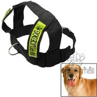 Wholesale Dog Ropes in Fashionable Dog Rope NO Chain Set for Police Dog Nylon Harness Lead Leash Traction Rope