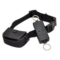 Wholesale Leash Walking Training e collar for Dogs