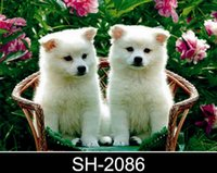 Wholesale pieces designs D lenticular decoration picture perfect child gift cute dog and cat pet designs