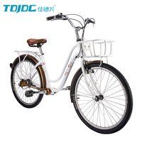 Wholesale 3 Speed TDJDC Flower Whisper Hi ten Fork Aluminium Alloy Chainless Shaft Drive Cruiser Bicycle DHL