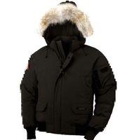 Wholesale Outside Coat napapijri down jacket Short coat for men Short thickening Mens winter coats hooded clothes colors for hot sale