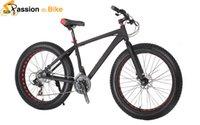 aluminum beach bikes - Passion Ebike New Top Quality Wide Fat Tire bicicleta mountain bike Bicycle Speed Snow Beach bicicletas mountainbike