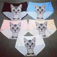 sexy pussy - Briefs Ladies Newest Hot D Kitten Pussy Cat Underwear Sexy Seamless Meryl Women Panties Female Boxer Prevent Expose Panty Lingerie