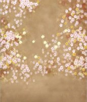Wholesale 150CM CM Hot sale new photography backdrops for photo studio photography baby backgrounds Mini baby backdrop