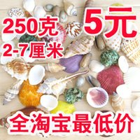 auatic plants - 5 conch shell combination fish tank auatic wedding decoration props