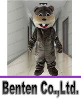 beaver castor - Nutria Beaver Mascot Costume Cheap Price Custom Castor Beaver Sino Castor Jungle River Animal Mascot Costumes LLFA1173
