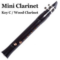 Wholesale Pocket Clarinet Wood wind Musical Instrument C Key Mini Flute Black Flauta Clarinete Beginners Clarinette With Reed Accessories