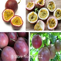best passion - Sale of kinds Passion Fruit Seeds Organic Heirloom Seeds Fruit Seeds NON GMO Best Quality Price Free Shi