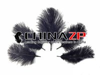 Wholesale Leading Supplier CHINAZP Crafts Factory cm inch Length Gergeous and Graceful Dyed Black DIY Ostrich Plume Feathers