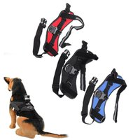 Wholesale Andoer Camera Accessories Quick Release Dog Fetch Mount Harness Chest Strap Belt for GoPro Hero Black Blue Red D1773