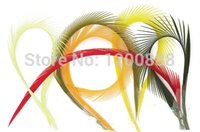 Wholesale 100 Goose Biots Loose Feather Feather hair Extension Assorted Color inch F069