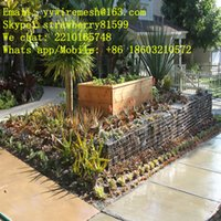Wholesale Sale mm Welded Gabions For Inner Decoration Gabion Size m Length m Width and m Tall