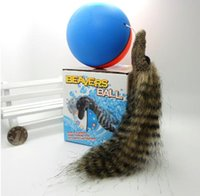 mix color beaver dog toy - Beavers Ball Rolling Motor Ball Fun Toy for Pets Cat Dog Weasel Chases Ball