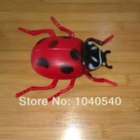beetle spider - Animal model toy beetle insect grasshopper ant bee spider scorpion mantis toys set Children s toys