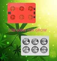 Wholesale RED and BLUE LED W Hydroponic Plant Grow Growth LED Light Bulb V