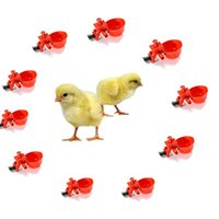 Wholesale Bag Chicken Drinker Automatic Bird Coop Feed Poultry Fowl Water Drinking Cups