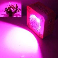 Wholesale 8 Band W Ful COB Led Grow Lights Spectrum Best for Hydroponics COB Led Plant Grow Light