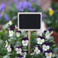 Wholesale Wooden chalkboard stick labels receptacle super miniature flowers inserted card gardening supplies