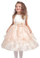 Wholesale Western Style A Line Jewel Tea Length Organza Light Pink Flower Girls Dress With Flower Newest Pageant Dress For Girls