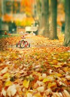 autumn leaves background - 200cm cm ft ft Fundo Yellow Autumn leaves Wood Tree baby photography backdrop background