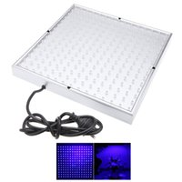 Wholesale New Square V W Blue LED Lamp Plant Grow Light Panel Hydroponic Lamp IP65 Water resistant for Flower Plants Growth