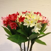 Wholesale quot REAL TOUCH FLOWERS white pink orange red colorful frangipani bridal wedding bouquets decorations HOME