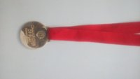 Wholesale Customized Cheap High Quality Colorful Medal Lanyard