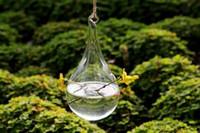 Wholesale 6pcs set teardrop glass planter drop glass terrariums hanging water culture vase for home decor green gifts